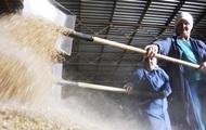 Украина в 2014 году собрала рекордный урожай зерна