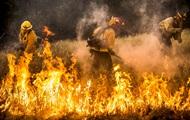 Более 10 тысяч человек эвакуированы из-за лесного пожара в Калифорнии