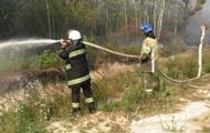 Под Киевом горит 19 гектаров хвойного леса