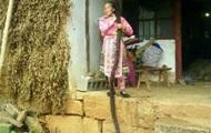 Китаянка ради рекорда отрастила косу длиной более 2,5 метров