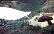 В Сеть выложили видео путешествия бобров-парашютистов