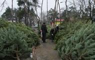 Продавец елок в Киеве предлагал покупателям пулемет