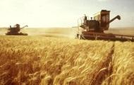 Урожай зерновых в Украине в 2015 году снизился более чем на 6%