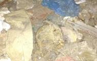 В центре Киева нашли человеческие останки