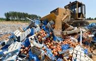 В РФ подсчитали количество уничтоженных санкционных продуктов