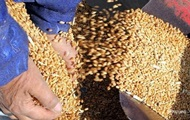 Украина экспортировала сельхозпродукции на $10 млрд