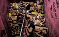 World Press Photo Contest: лучшие фото года