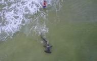 В США рыбак поймал двухметровую рыбу-молота