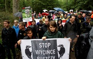В Польше протесты против вырубки Беловежской пущи