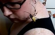 Гигантский паук прополз по лицу женщины
