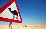 В Казахстане джип врезался в верблюда: пять погибших