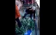 Экскурсовода испугал треснувший стеклянный мост