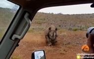 Нападение носорога на автомобиль сняли на видео